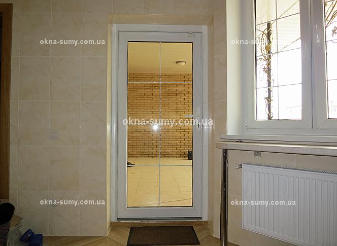 двери входные из стеклопакетов тонированные